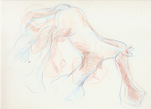 twin drawingMain function of a toy horse (2012) pencil on paper